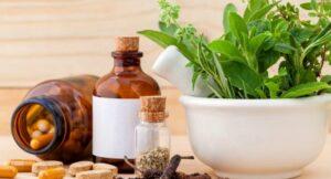 medicament-plantes-kerdkanno-shutterstock-12001