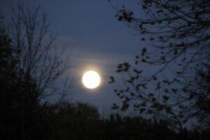 pleine-lune-2-1
